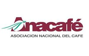 Guatemala Coffee Farms Achilles Coffee Roasters San Diego