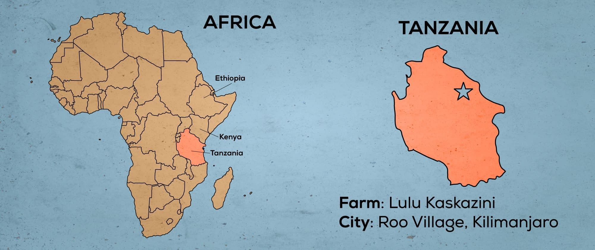 Map of Africa & Tanzania