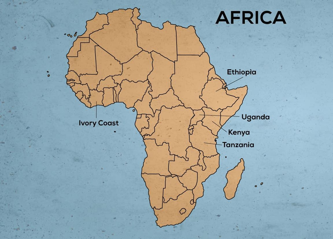 The Top 5 Coffee Growing Regions in Africa