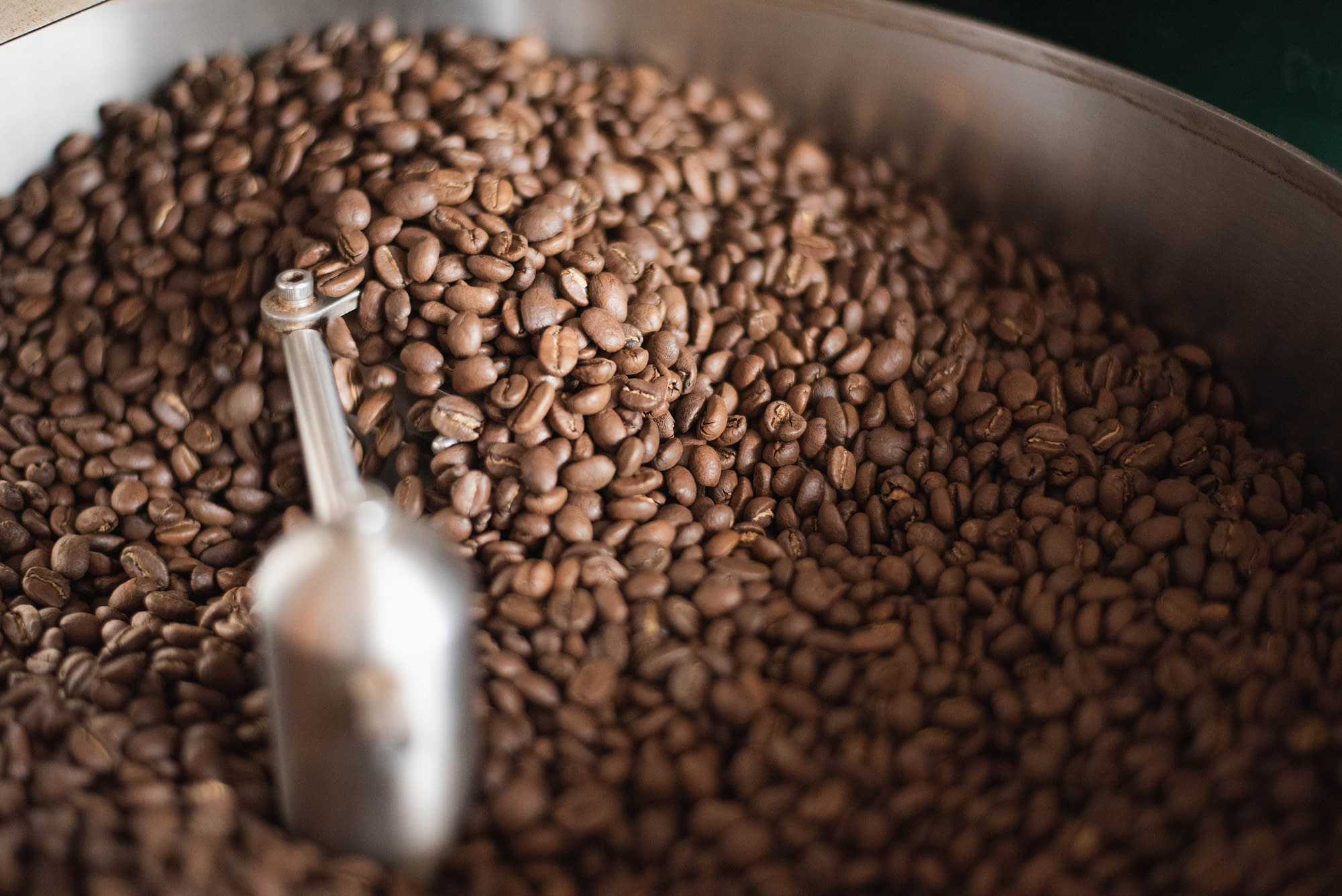Freshly Roasted Achilles Coffee Beans