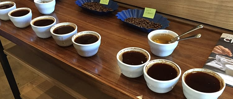 Achilles-Coffee-Roasters-San-Diego-Cupping-1a